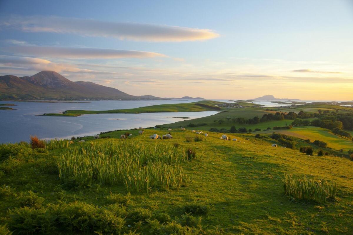 10 Best Westport Hotels, Ireland (From $44) - brighten-up.uk